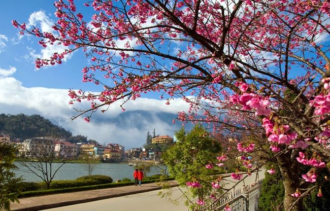 Travel in Dalat Vietnam