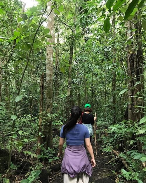 Trekking in Nam Cat Tien National park