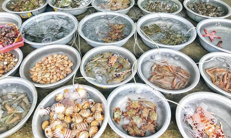 Fresh seafood in Cham Island